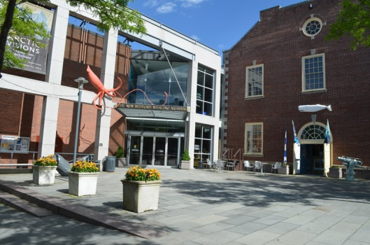 WHALING MUSEUM 1
